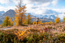 Hiking Healey Pass Near Egypt Lakes In Banff During Autumn