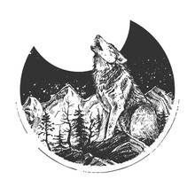 Howling Wild Wolf Engraved Sketch