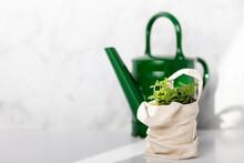Baby Plant Against White Marbl...