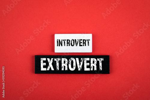 Fototapeta Introvert and Extrovert