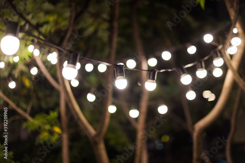 Fototapeta Blurred background, backyard illumination, light in the evening garden, electric lanterns with round diffuser. Lamp garland of light bulbs on a tree branch among the leaves, illuminate night scene. obraz