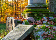 Denkmal Im Wald