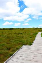Board Walk Through Marshland U...