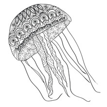 Jellyfish For Adult Anti Stress Coloring Page Stock Vector