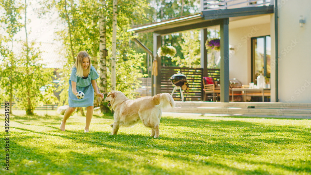 Fototapeta Cute Girl Has fun with Happy Golden Retriever Dog on the Backyard Lawn. She Plays Fetch with Football Ball. Happy Dog Plays with Toy Ball. Idyllic Summer House.