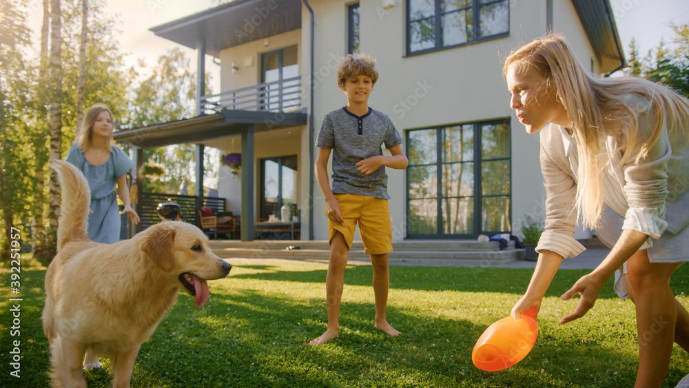Fototapeta Beautiful Family of Four Play Catch Toy Ball with Happy Golden Retriever Dog on the Backyard Lawn. Idyllic Family Has Fun with Loyal Pedigree Dog Outdoors in Summer House Backyard.