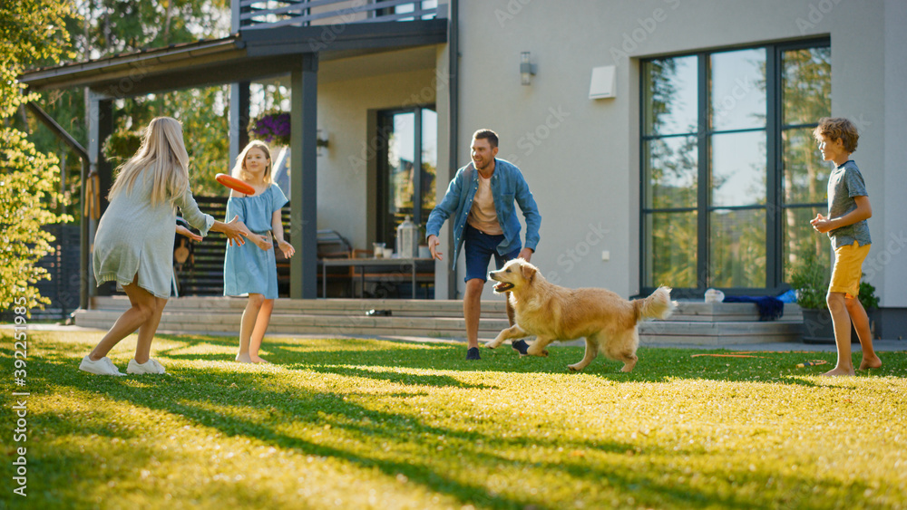 Fototapeta Smiling Beautiful Family of Four Play Fetch flying disc with Happy Golden Retriever Dog on the Backyard Lawn. Idyllic Family Has Fun with Loyal Pedigree Dog Outdoors in Summer House Backyard
