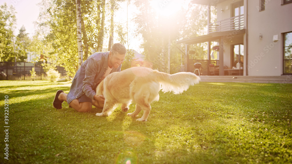 Fototapeta Handsome Man Plays Catch flying disc with Happy Golden Retriever Dog on the Backyard Lawn. Man Has Fun with Loyal Pedigree Dog Outdoors in Summer House Backyard.