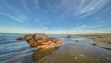 View Of The Marine Coastline W...