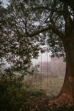Mystical Landscape Of Abandoned Yard With Swing On Branch Of Big Tree Against Foggy Ancient Country Houses In Daytime