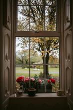 Autumn Garden Behind Manor Window
