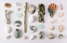 Collection Of Natural Objects ...