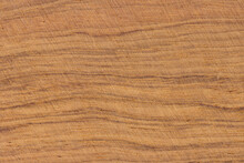 Wood Cross Section Texture Background