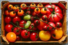 Mixed Varieties Of Fresh Tomato