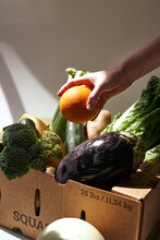 Box Of Produce With Hand
