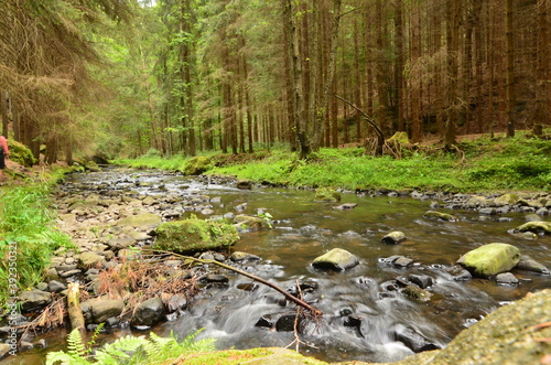 Tela czech switzerland mountains forest river nature sky lake rocks outdoor relax