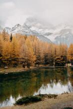 A Reflective Calm Mountain Lak...