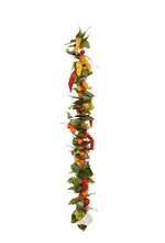 Spicy Colorful Chili Peppers On A String Isolated On A White Background