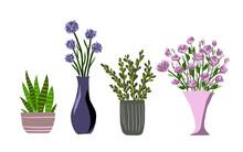 Indoor Garden Plants And Fresh...