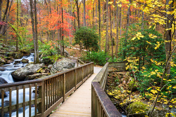 Anna Ruby Falls, Georgia, USA