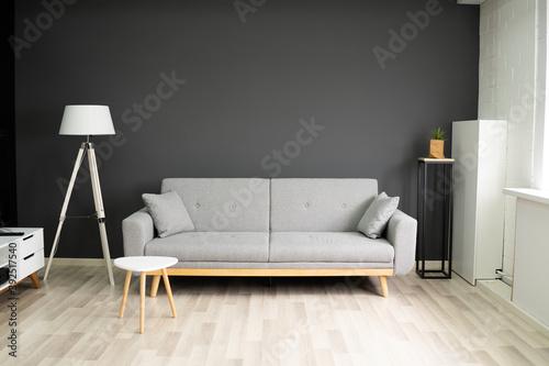 Fotografie, Obraz Home Comfort Living Room With Sofa