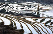 canvas print picture - Rice terraces in Yuanyang County. Yunnan Province. China.
