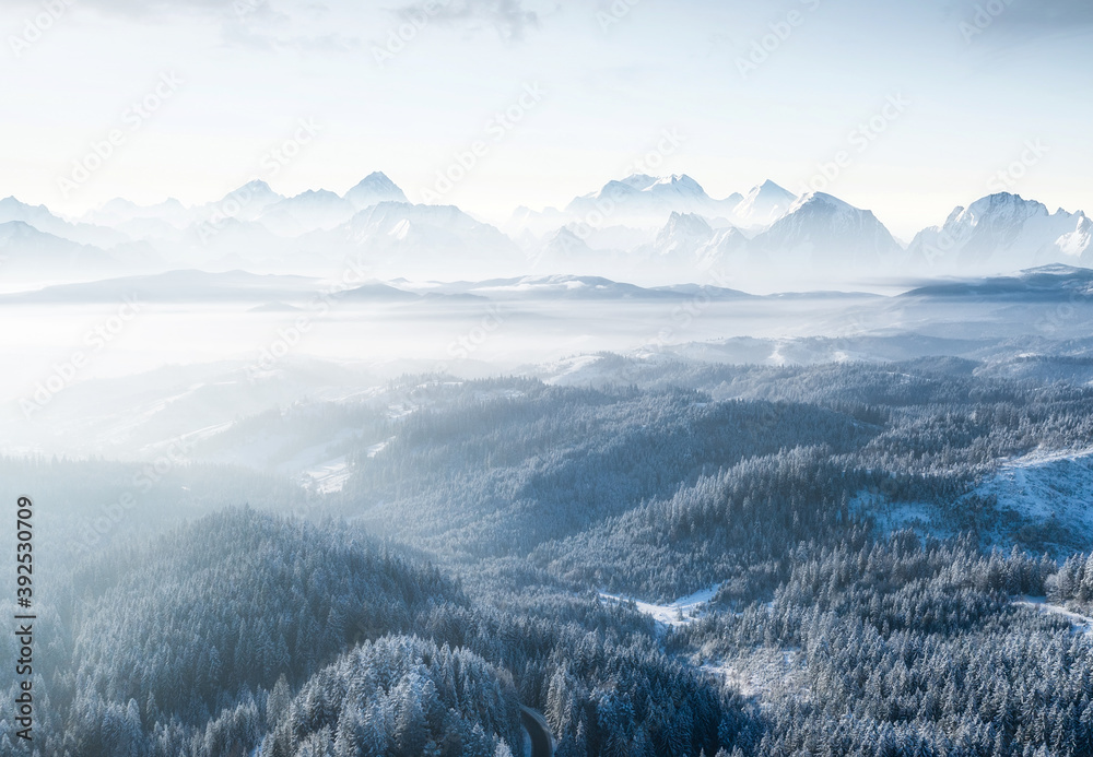 Fototapeta Aerial view on forest and mountains in winter time. Natural winter landscape from air. Forest under snow in winter time. Landscape from drone.