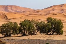 Morocco, Desert, Dunes, Sand