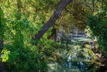 Eleanor Tinsley Park In Houston, TX