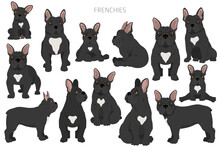 French Bulldogs In Different Poses. Adult And Puppy Set