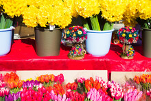 Selling Flowers. Bouquets Of C...