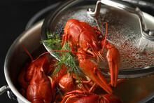 Fresh Delicious Crayfish Over ...
