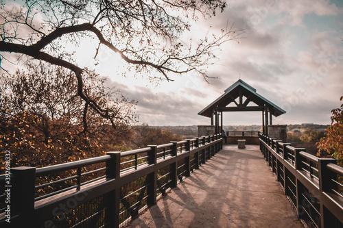 Vászonkép bridge in the morning