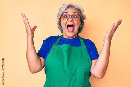 Senior hispanic woman wearing apron and glasses celebrating victory with happy s Fototapeta