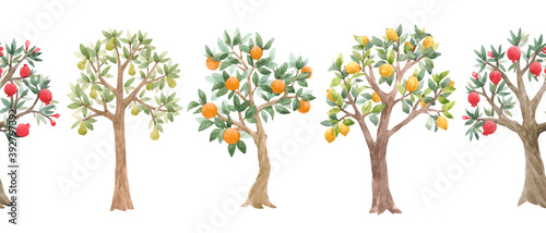 Fototapety, obrazy: Beautiful seamless pattern with cute watercolor fruit trees. Stock orchard illustration.