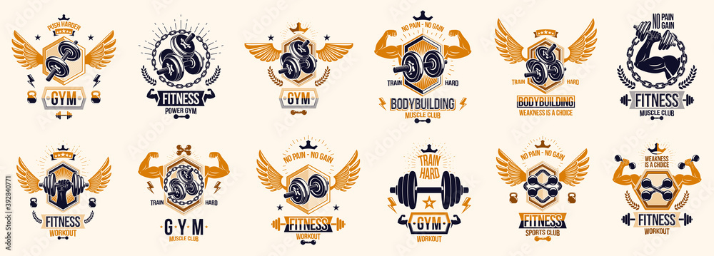 Fototapeta Fitness sport emblems logos or posters with barbells dumbbells kettlebells and muscle man silhouettes vector set, athletic workout active lifestyle theme, sport club or competition awards.
