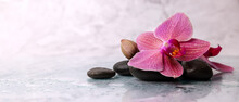 Wet Orchid Flower With Spa Stones On White Marble Background. Wellness Beauty Treatment. Banner Copy Space