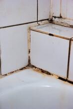 Dirty And Damaged Old Porcelain Bathroom Tiles Corner Close Up Shot