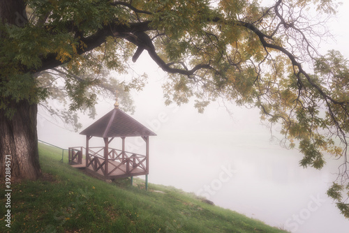 Foggy alley in autumn city park, beautiful misty landscape with alcove over the Fototapeta