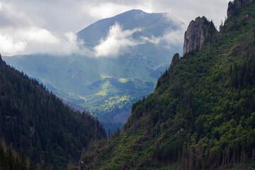 Górski krajobraz pejzaż góry las chmury natura
