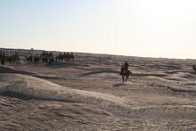 Jeździec Na Saharze