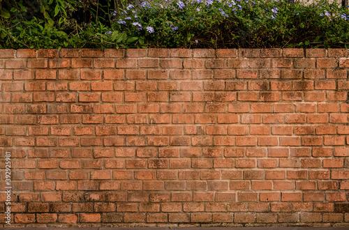 background and texture of old decorative red brick wall fence on concrete floor Billede på lærred