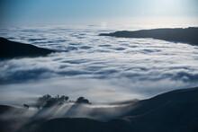 Fog Envelops The Santa Monica ...
