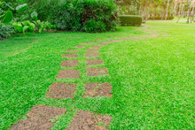 The Walkway Pattern Of Steppin...