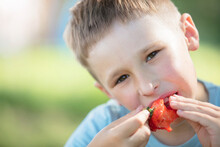 The Child Eats Berries. The Face Of A Boy Eating Sweet Strawberries.