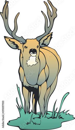 Illustration of a deer Fototapet
