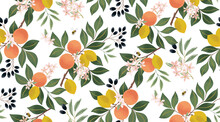 Vector Illustration Of Seamless Floral Pattern With Fruits. Design For Cards, Party Invitation, Print, Frame Clip Art And Business Advertisement And Promotion