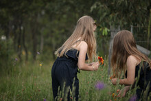 Sisters Picking Wild Flowers T...