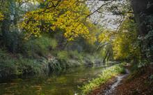 Basingstoke Canal Autumn
