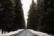 Asphalt Roadway Among Snowy Co...